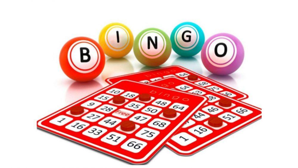 bingo no casino to do